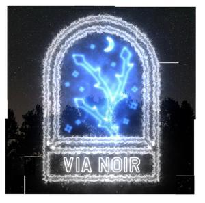 vianoir.jpg