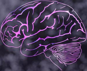 neurallace.jpg