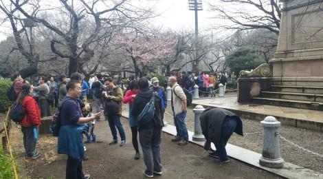 上野公園調査