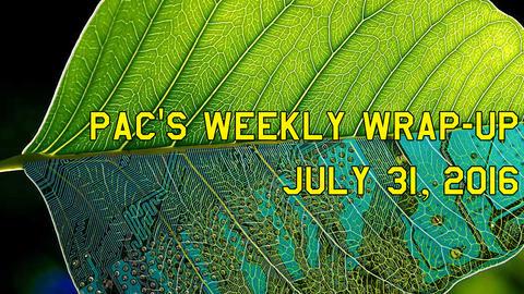 週間総括:2016年07月31日