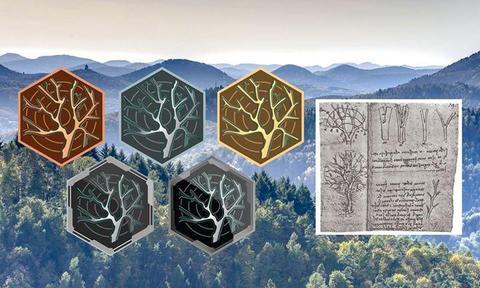 5周年記念:樹木の叡智