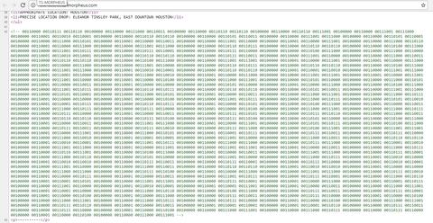 モルフェウス(82):バイナリコードの復号結果