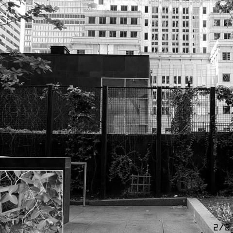 デッドドロップ:フィラデルフィア(2)