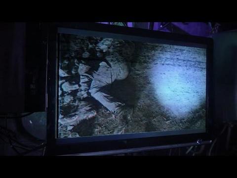 ハンクの発見(映像)