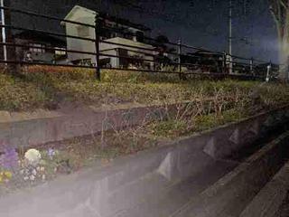 デッドドロップ:埼玉