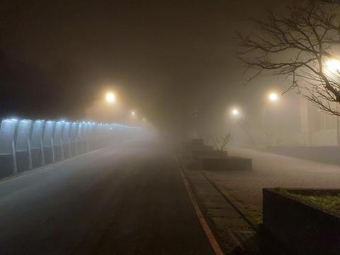 霧の中でネメシスを打倒する(共有)